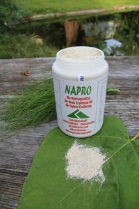Napro Pulver Nahrungsergänzungsmittel mit Algen aus dem Pazifik