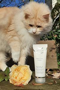 Sie sehen Hand Care Vitalize von GOLOY 33 - Fotoshooting im Freien mit Kätzchen.